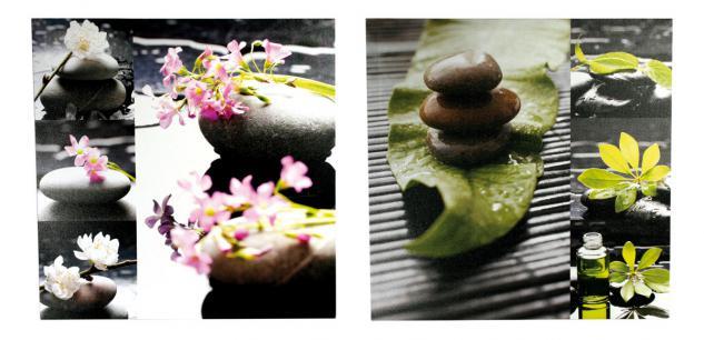 2 Wandbilder Set Lotusblüten Feng Shui Wellness 2er Set Bild