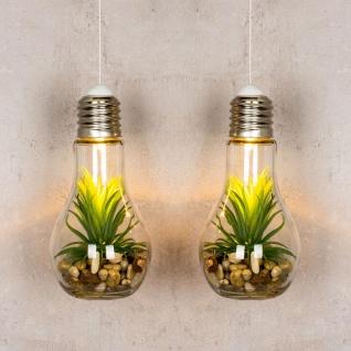 2er Set LED Glühbirne Sukkulenten H19cm Grün Deko Lampe Kunstpflanze Tischdeko - Vorschau 3