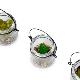4er Set Sukkulenten Glas 6x7cm Pflanze Grün Tischdeko Kunstpflanze Deko - Vorschau 3
