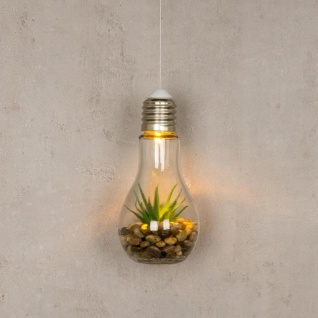 2er Set Sukkulenten Glühbirne Glas je B x H 8 x 19cm Deko LED Lampe Kunstpflanze - Vorschau 3