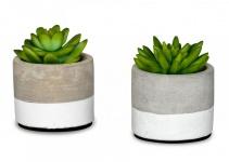 2er Set Sukkulenten im Zement Topf 9 cm Beton Kunstblume Kunstpflanze Grün