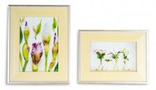 levandeo 2er Set Bilderrahmen Pastell Gelb 10x15 + 13x18 Fotorahmen Glas Deko