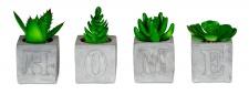 levandeo 4er Set Sukkulenten Im Betontopf Je 5x9cm Home Beton Kunstpflanze Grün