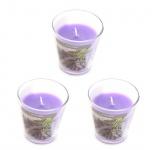 levandeo 3er Set Duftkerzen im Glas 9cm Hoch Lavendel Kerze Windlicht Deko