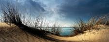 levandeo Glasbild 30x80cm Wandbild Glas Düne Meer Beach Strand Natur Wasser Deko
