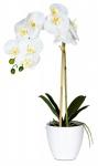 levandeo Orchidee Weiß 61cm Hoch Kunstpflanze Kunstblume Blume Pflanze Deko