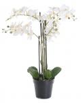 Weiße Orchidee 72cm Pflanze Kunstblume Kunstpflanze Dekoration Blume