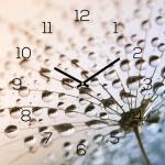 levandeo Wanduhr Glas 30x30cm Glasuhr Uhr Glasbild Pusteblume Deko Blume