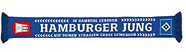HSV Hamburger SV Schal / Fanschal ** Hamburger Jung ** 29353