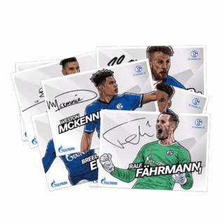 FC Schalke 04 *** Autogrammkarten *** mit gedruckten Unterschriften 17/18