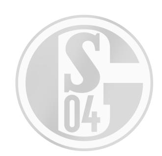 FC Schalke 04 Aufkleber / Sticker / Autoaufkleber *** silber ***