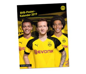 BVB Borussia Dortmund Kalender / Poster Kalender ** 2019 **