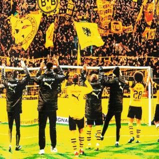 BVB Borussia Dortmund Pullover / Sweatshirt ** Gelbe Wand ** 19210900 - Vorschau 3