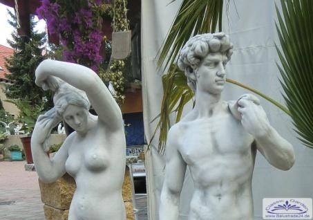 S178 SR259 Gartenfigur David von Michelangelo und Venus Skulptur Steinfigur Figur