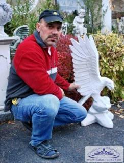 BD-Z67 Adler Gartenfigur Steinfigur Steinadler auf Felsen Adlerfigur weiss 90cm 46kg - Vorschau 4