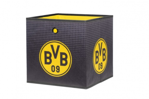 Faltbox Box - BVB 09 / Nr.1 - 32 x 32 cm / 3er Set