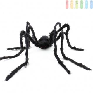 Halloween-Riesenspinne von Arti Casa, schwarz, haarig, rote Augen, Breite mit Beinen ca. 125 cm, Länge Körper ca. 22, 5 cm