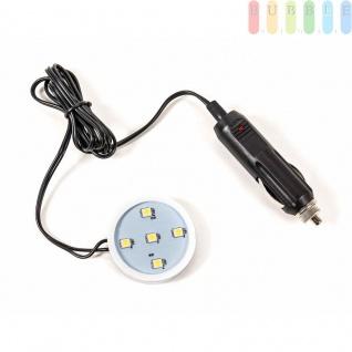 LED Beleuchtung von ALL Ride für Lufterfrischer Poppy, 5 LEDs, 24V, Farbe Weiß