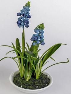 formano Deko Muscari blau im weißen Keramiktöpfchen, 18 cm