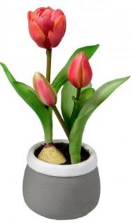 Künstlich blühende Tulpen im Topf grün rot grau 24 cm Osterdeko