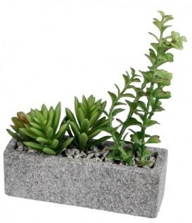 Deko Kaktus im grauen Steintopf 19 x 5 cm