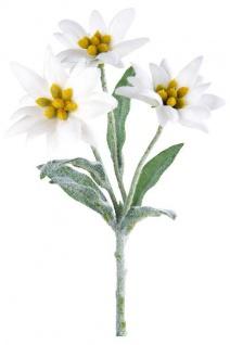blühende Alpen-Edelweiß künstlicher Gebirgs-Enzian Kunst-Blumen Gebirgsblume Alpenblumen weiß grün 23cm Osterblume Frühjahrsblüher