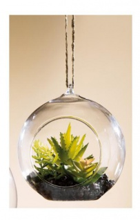 GILDE Deko Kaktus Sukkulente im Kugelglas, 9, 5 x 10 cm
