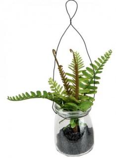 formano Deko Farn im Glas zum Aufhängen, 17 cm