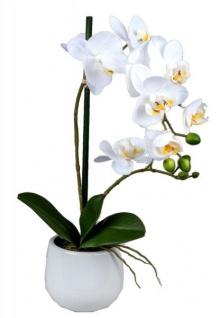 Wunderschöne Orchidee im Porzellantopf, weiß, 48 cm