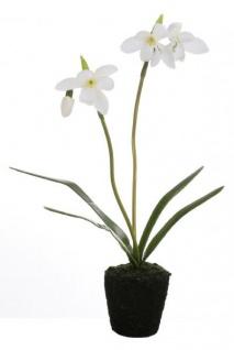 GILDE Deko Schneeglöckchen weiß auf einem Erdballen, 26 cm