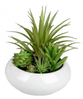 Deko Kaktus in einem weißen Porzellantopf 15 cm