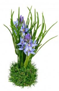 Künstlich blühende Hyazinthen auf Moos-Sockel Deko-Pflanze lebensechte Kunst-Blumen Plastikblume Frühjahrsblüher grün blau violett 24cm