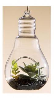 GILDE Deko Kaktus Sukkulente in einer Glühbirne, 7, 5 x 8 x 14 cm
