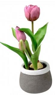 Künstlich blühende Tulpen im Topf grün lila grau 24 cm Osterdeko