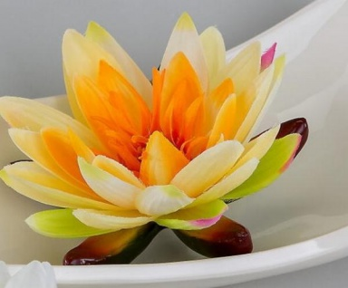 formano Kunstblume Schwimmrose in Orange, 16 cm