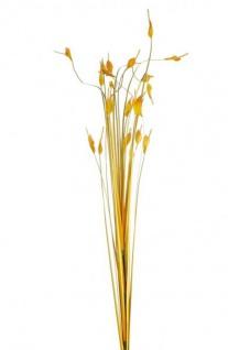 GILDE Deko Gras stehend als Strauch, orange, 60 cm