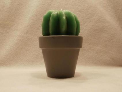 Kaktus Kleiderständer kaktus im günstig sicher kaufen bei yatego