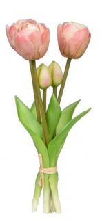 formano Kunstblume Tulpenbündel, creme, 5 Stück, 25 cm