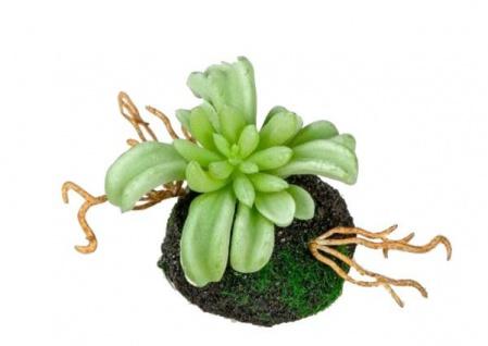 formano trendiger Deko Kaktus auf Erdsockel, 8 cm