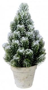 formano Wunderschöner Schneetannenbaum 33 cm