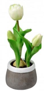 Künstlich blühende Tulpen im Topf grün weiß grau 24 cm Osterdeko