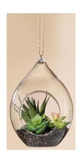 GILDE Sukkulente Kaktus im Tropfenglas, 9 x 9, 5 x 14 cm