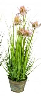 Künstliches Distelgras Kunstgras im Blechtopf Deko-Pflanze naturgetreue Kunst-Pflanze Grasbusch Grünpflanze Ziergras grün rot 60 cm
