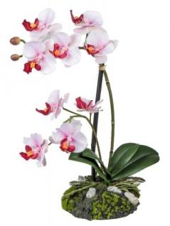 Wunderschöne Orchidee auf Sandsockel, rosa, 31 cm