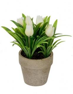 Künstlich blühende Tulpen im Terrakotta-Topf Deko-Pflanze lebensechte Kunst-Blumen Plastikblume Frühjahrsblüher grün weiß13 cm