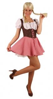 Oktoberfest Dirndl Kostüm Resi braun-rot-weiß Trachtenkleid Damen Dirndl KK - Vorschau
