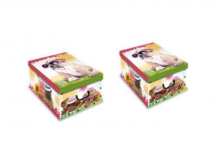 Ordnungsboxen Deko Karton 2er SET Box Clip Cani al sole Hund Aufbewahrungsbox für Haushalt Büro Wäsche Geschenkbox Dekokarton Sammelbox Mehrzweckbox Ordnungskarton Ordnungsbox Geschenkekarton