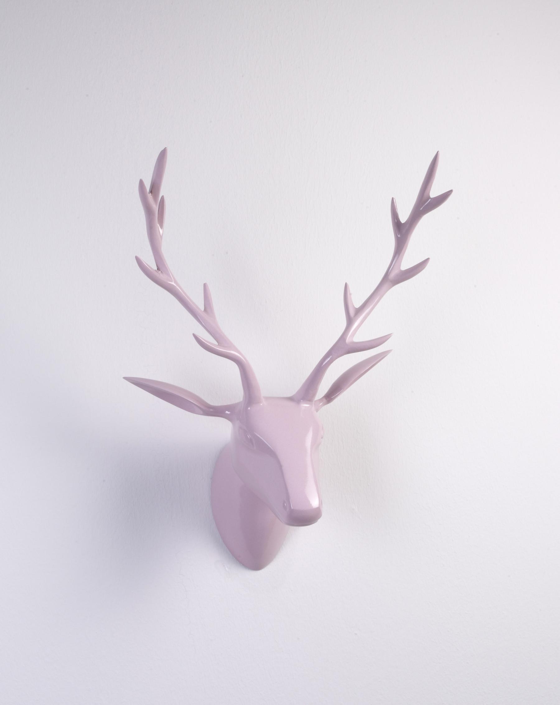 deko geweih hirschkopf rosa poliert hirschgeweih hirschkopf geweih figur skulptur deko. Black Bedroom Furniture Sets. Home Design Ideas