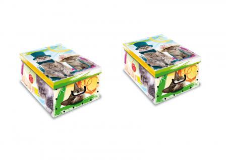 Ordnungsboxen Deko Karton 2er SET Box Clip Gattini Katze Aufbewahrungsbox für Haushalt Büro Wäsche Geschenkbox Dekokarton Sammelbox Mehrzweckbox Ordnungskarton Ordnungsbox Geschenkekarton