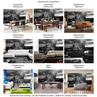 liwwing Vlies Fototapete 350x245 cm PREMIUM PLUS Wand Foto Tapete Wand Bild Vliestapete - Tiere Tapete Jaguar Sonnenuntergang Himmel Wasser schwarz - weiß - no. 614 - Vorschau 5